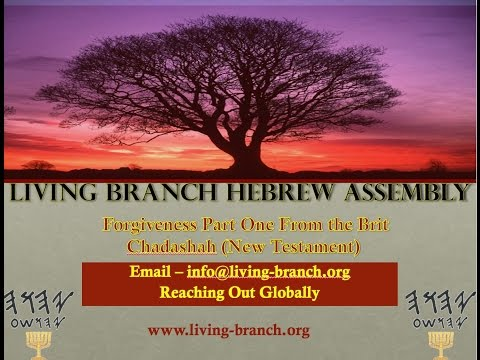 Forgiveness Part One From the Brit Chadashah (New Testament)