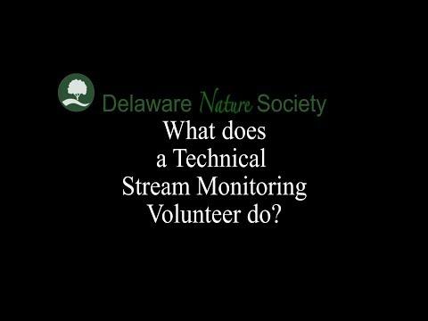 StreamWatch Volunteer - Delaware Nature Society