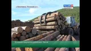 Вести-Хабаровск. Особая обработка экспортного леса в Ульчском районе