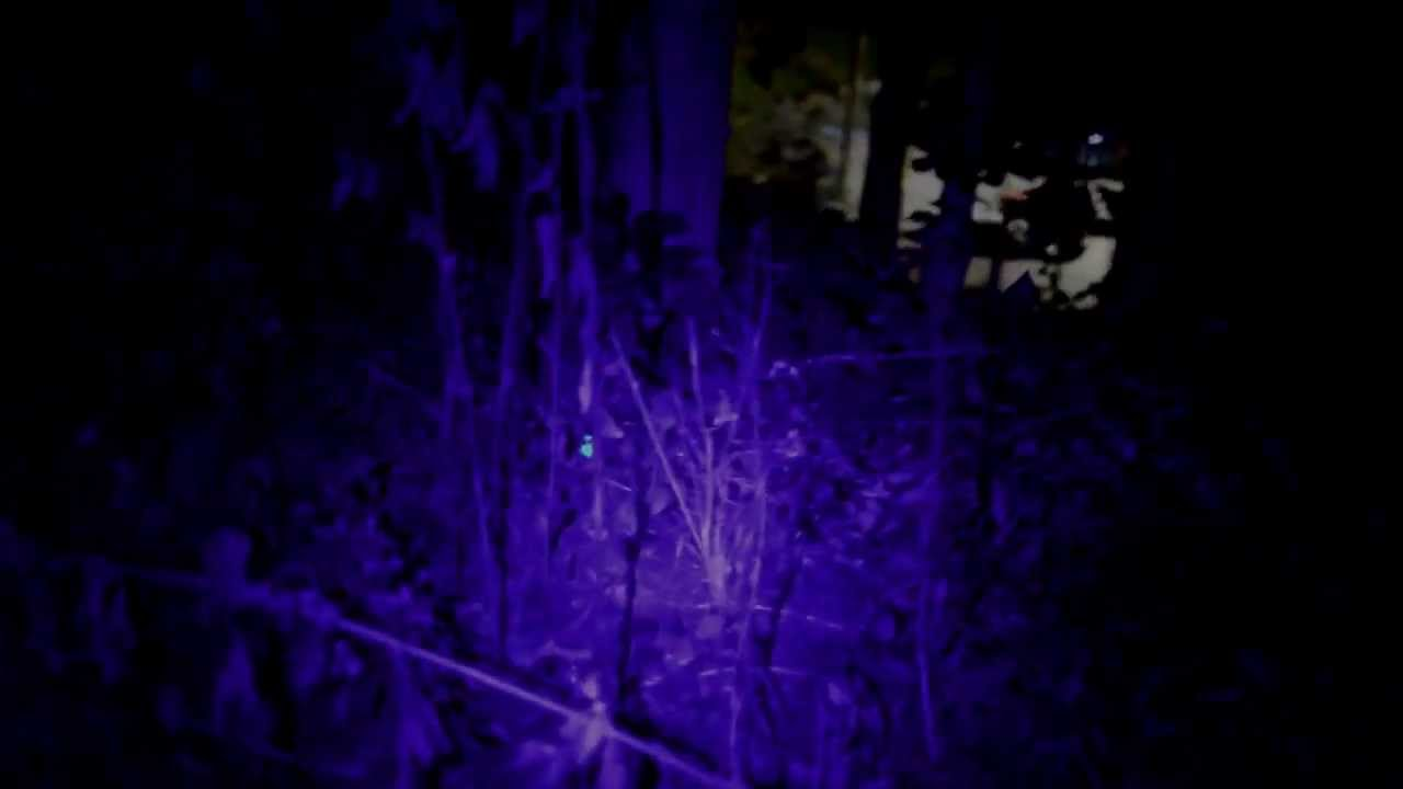 Find Lost Hunting Arrows With A Ultraviolet Light Youtube