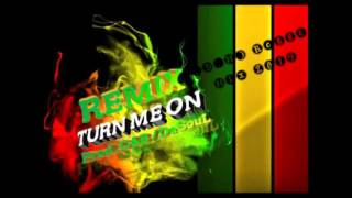 Turn Me On (Kevin LyttLe) Regge Mix (2014)