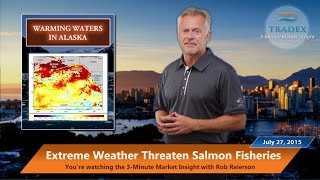 3MMI - Extreme Weather Conditions & Drought Pose Big Threat to Salmon Fisheries
