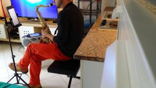 Kiss from a rose tenor sax cover