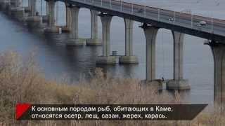 24 факта истории реки Кама