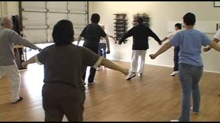 Yang Family Tai Chi practice Right Heel Kick to Cross Hands