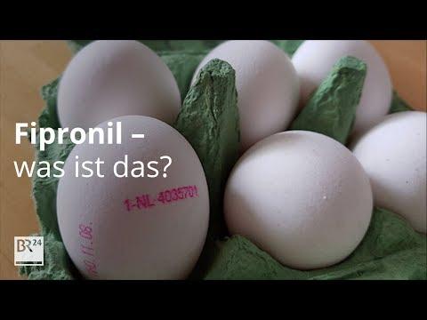 Fipronil - Was ist das?