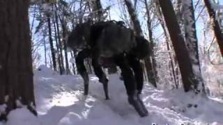 Robot Dog Boston Dynamics Big Dog. Weird.mp4
