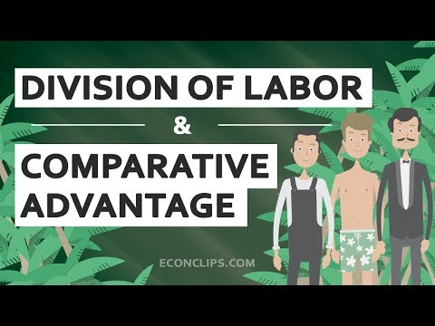 👨‍🌾👨‍🍳👨‍⚕️ Division of Labor and Comparative Advantage | Free Trade