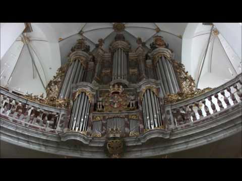 Copenhagen to Aarhus, Travel Video Denmark