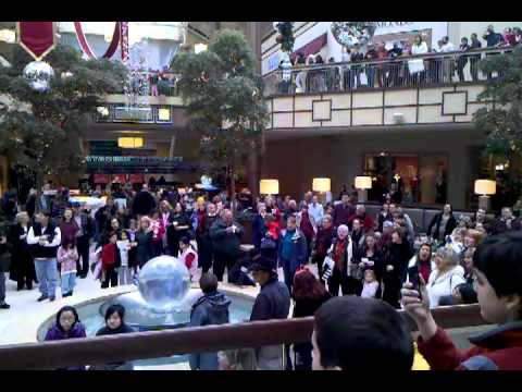 Mall flash mob broke out in Christmas Songs