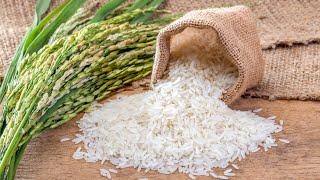 ЛЕЧЕБНЫЕ свойства РИСА и рисовой ВОДЫ: при ожирении, гастрите, диареи, запора, диабета, гипертонии