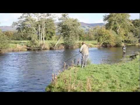Environment Agency Advice On Catch And Release Fishing, Presented By Hywel Morgan; Salmon Welsh Dee