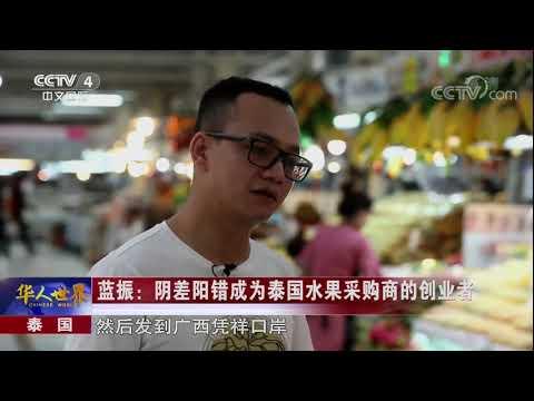 《华人世界》 20170915 | CCTV-4
