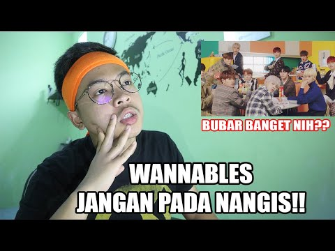 JANGAN SEDIH!! WANNA ONE - SPRING BREEZE MV REACTION