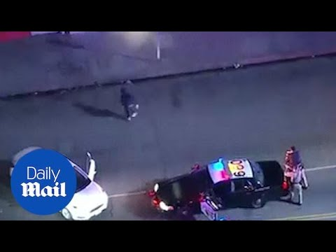 AM Tampa Bay - Police Chase Suspect Dances Before Being Arrested