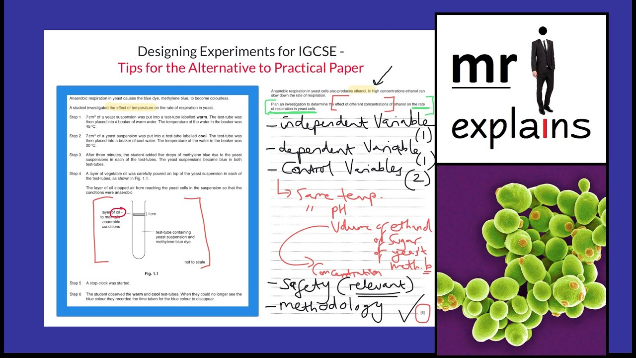 mr i explains: Designing Experiments for IGCSE - Tips for the Alternative to Practical Paper - YouTube