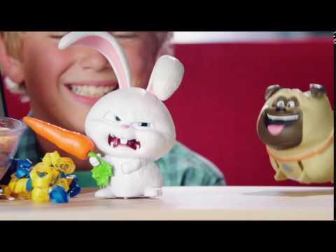 Evcil Hayvanların Gizli Yaşamı Oyuncakları Toyzz Shop'ta
