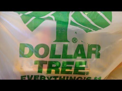Black Friday Dollar Tree haul