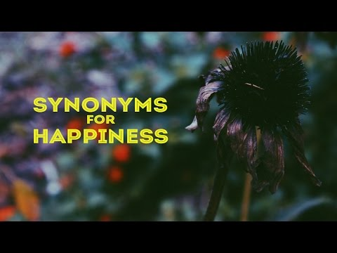 Synonyms for Happiness