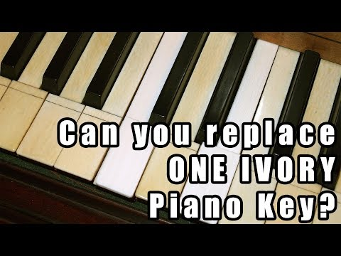 Can You Replace Just One Ivory Key on Your Piano?
