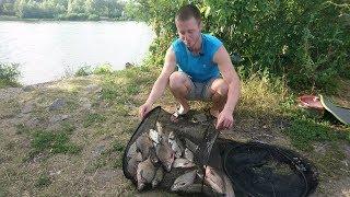 Начал на Днепре, а продолжил на Десне). Хорошая рыбалка в отпуске))).