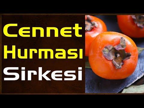 Cennet Meyvesi Hurma Sirkesi Nasıl Yapılır - Trabzon Hurması Sirke Tarifi
