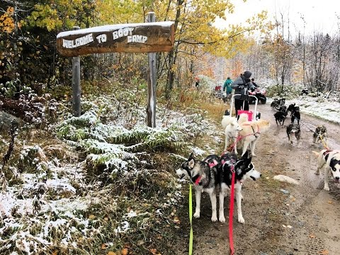 MUSHING BOOT CAMP - Togo, MN Fall 2016