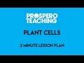 2 Minute Lesson Plan - Cells