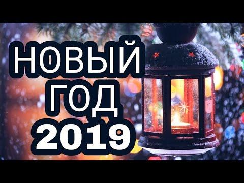 НОВЫЙ ГОД 2019  #год_свиньи #символ_года