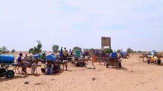 Sénégal: L'insécurité alimentaire à la porte de certaines localités du Pays
