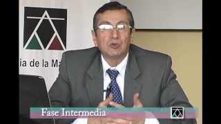 Fase Intermedia - Dr. Victor Cubas Villanueva