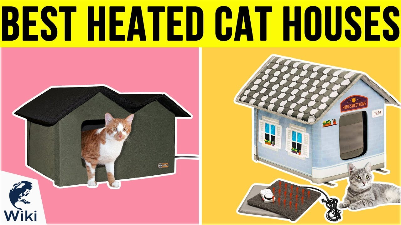 8 Best Heated Cat Houses 2019 Youtube