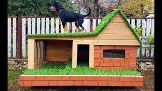 Новый дом для собаки за выходные! Будка, в которой жил бы сам!