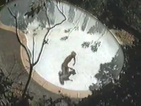 Shlohmo - Empty Pools