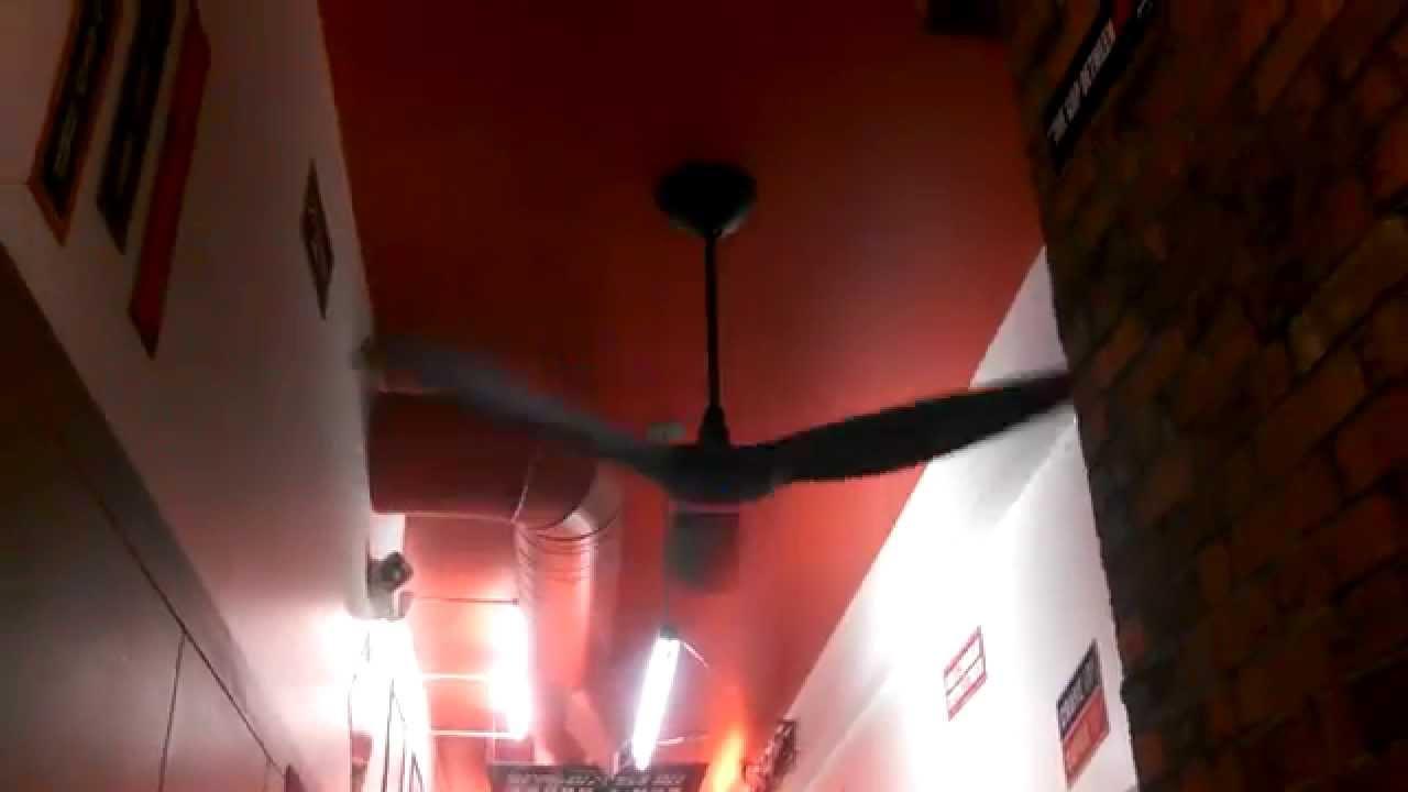 Big Ass Fans Haiku Ceiling Fan In A Sandwich Shop Youtube By