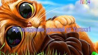 Инди Кот на Майле - уровень 84