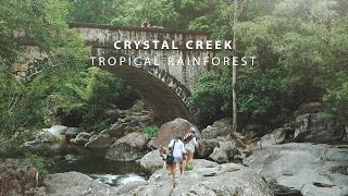 Beautiful Tropical Rainforest! - Crystal Creek Adventure
