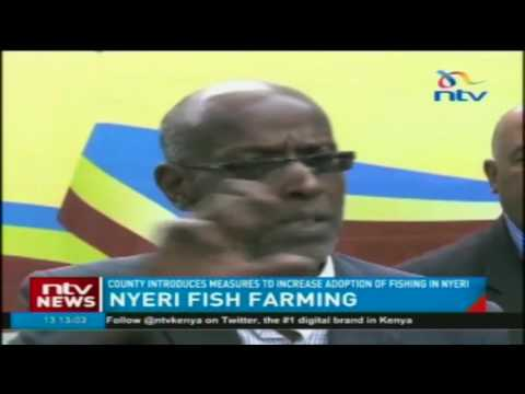 Nyeri county introduces measures to increase adoption of fishing
