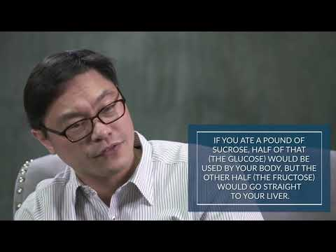 the-trouble-with-fructose---dr.jason-fung