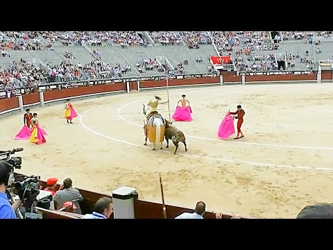 Our First Bullfight in Spain