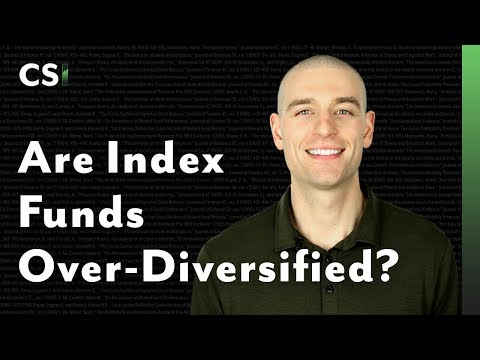 Are Index Funds Over-Diversified?