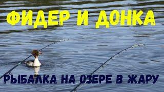 Фидер и донка Рыбалка на озере в жару Feeder and donka Fishing on the lake in the heat