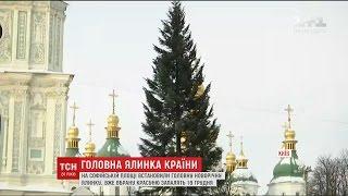 На столичній Софійській площі встановили головну ялинку країни