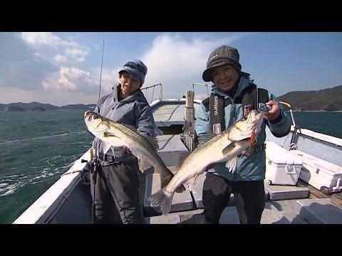 【釣り百景】#179 三重県鳥羽沖 ライトジギングの真骨頂