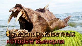 5 ужасных животных которые вымерли #top5 #top10 #review #обзор #факты #вещи #ужасы