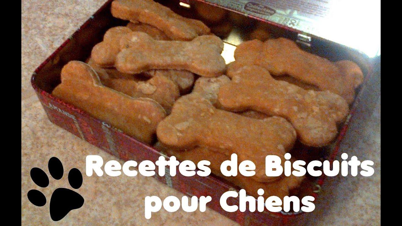 Extrêmement Recette de biscuits pour chien au Pâté de Foie - YouTube LE86