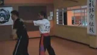 Apresentação do Mestre em Artes Marciais de Kung Fu