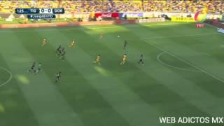 Gol de tigres vs dorados 1-0