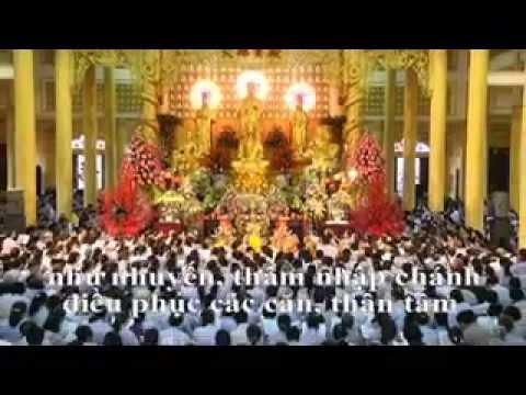 TUNG KINH VÔ LƯỢNG THỌ 2012-02 (Thầy Thích Trí Thoát Tụng )