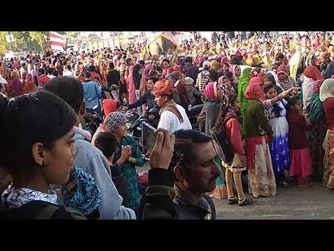 Meghwal Vivah Samelan Sojat City